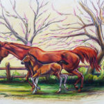 Mare & Foal - Colored Pencil 10